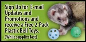 Marshall Pet: 2 Free Pet Toys