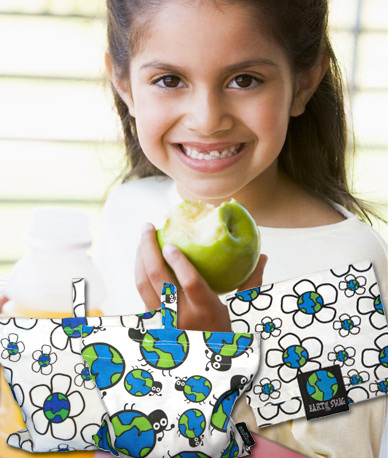 Earth Swag Reusable Lunch Bags