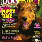 Dog Fancy Magazine Subscription Only $5.29