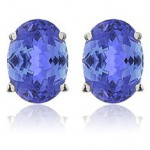 Tanzanite Necklace and Earrings $21.99