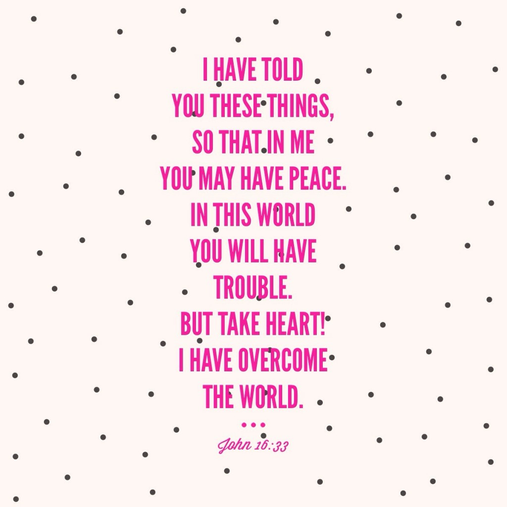 John 16:33 {Verse of the Day}