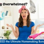 Help Has Arrived! Get The Ultimate Homemaking Bundle for $29.97