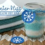 Winter Bliss Exfoliating Body Scrub