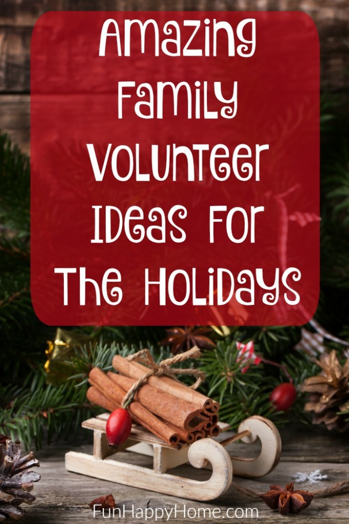 Amazing Family Volunteer Ideas For The Holidays
