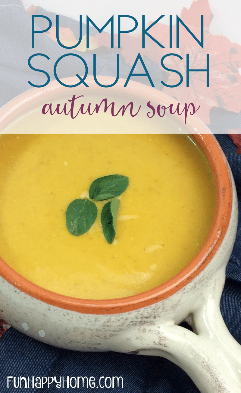 pumpkin squash autumn soup (1)