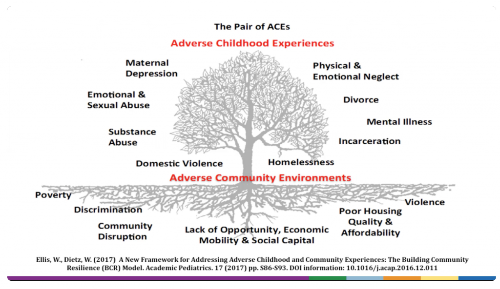 graphic showing the pair of aces adverse childhood experiences and adverse community environments and all the problems that they can cause